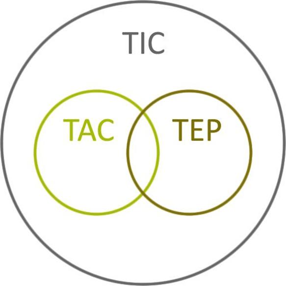 Esquema del proceso TIC-TAC-TEP en el ámbito de la ERE